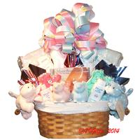 Twice as Nice Baby Basket